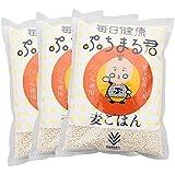 【3袋セット】西田精麦 毎日健康 ぷちまる君 ( 1kg )×3袋 熊本県産 大麦100%使用