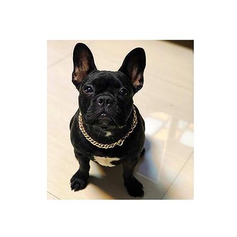 LI Hua - Collar para Mascotas con Cadena de Plata de Oro y Gato, pequeño