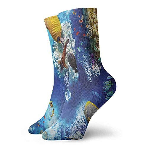 (thin Silk socks Ocean,Wild Underwater Sea Animal,socks for toddler boys)