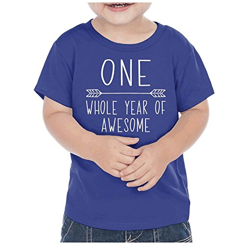 First Birthday Boy T Shirt One Year Old Outfit 18 Months Cobalt Blue