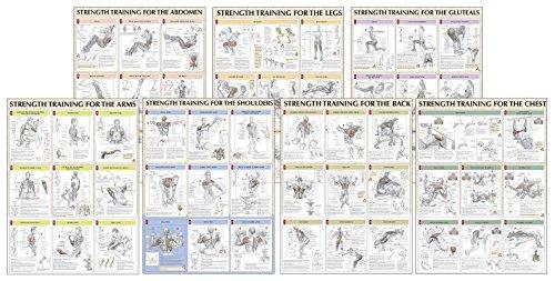Download Strength Training Anatomy Poster Series Book Pdf Audio Id