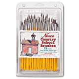 Nasco 72 Piece Country School Detail Round Brush Set