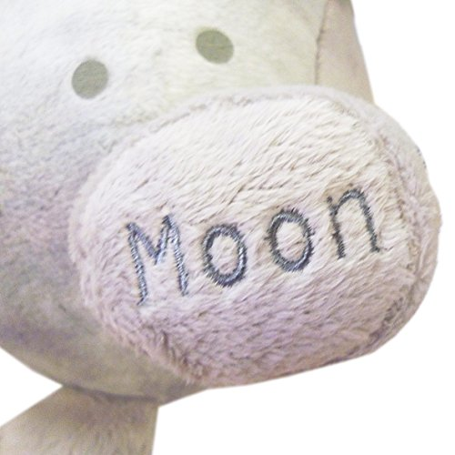 a description of the moon as the only natural satellite of earth After the description and photos of the moon thre is a fairly comprehensive  although the moon is officially described as the earth's only natural satellite,.