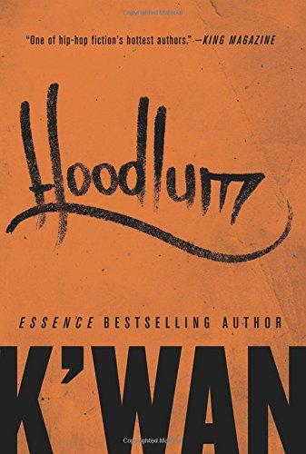 Hoodlum: A Novel ebook