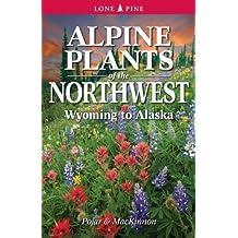 Alpine Plants of the Northwest: Wyoming to Alaska by MacKinnon, Andy, Pojar, Jim, Pojar (2013) Paperback