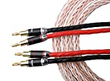 HannLinte HiFi Speaker Cable (1 pair ), Gold Plated Banana Plugs-10AWG (OFC), 8.2FT x 2 Cables, White & Transparent Braid