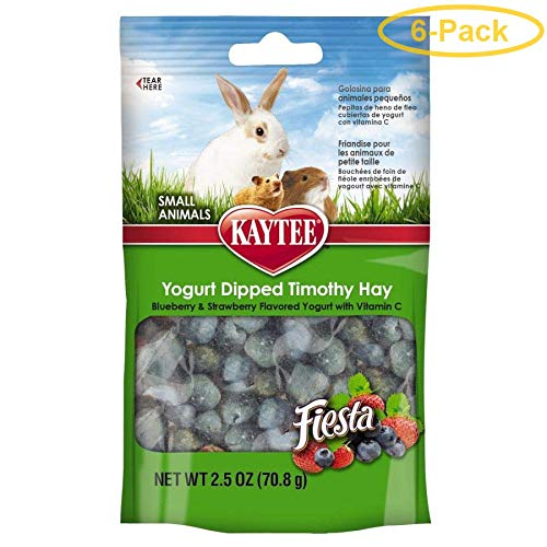 Kaytee Fiesta Timothy Bits Blueberry Straw 2.5oz
