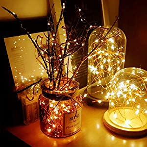 100 LED 33ft String Fairy Lights, USB Plug-in Remote Dimmable Warm White Starry String Lights Waterproof Copper Wire Lights for Christmas,Bedroom,Holiday,Garden,Party,Indoor Outdoor Decorative