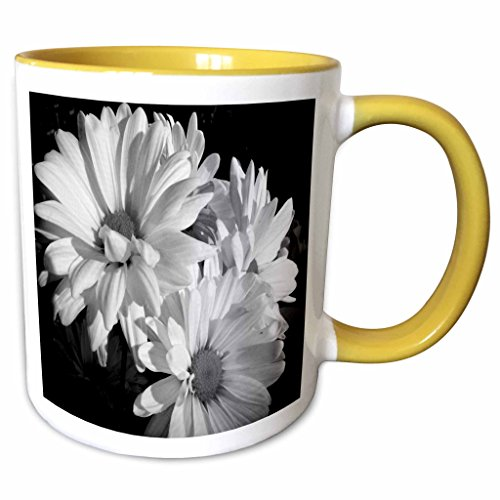 3dRose Dawn Gagnon Photography Florals - Daisy Trio, Black and White photograph of a trio of Daisies - 15oz Two-Tone Yellow Mug (mug_120435_13) ()