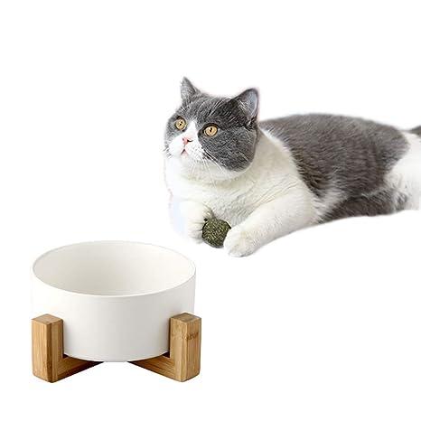 DOARG Comedero para gatos de cerámica con plato de gato ...
