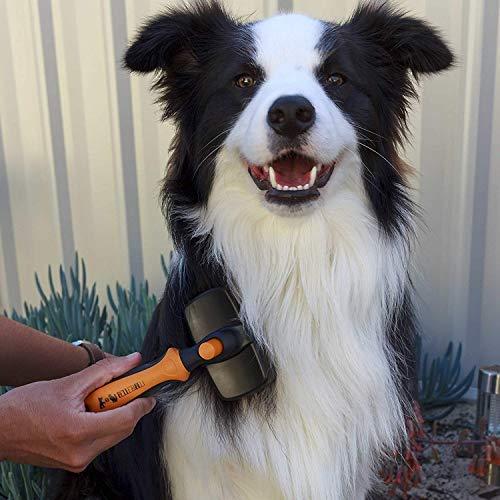 Peine Remueve Efectivamente el Pelo Muerto en Mascotas de Largo o Corto BELLE/&BLU Cepillo para Perros y Gatos Autolimpiable Carda con P/úas Flexibles en Acero Inoxidable