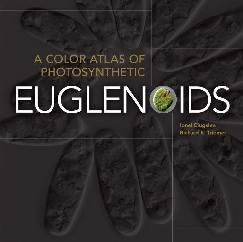 A Color Atlas of Photosynthetic Euglenoids (Color Atlas Microbiology)