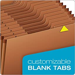 Globe-Weis/Pendaflex Heavy Duty 31-Pocket Expanding File with Flap, 1-31 Index, Letter Size, Brown, (R117DLHD)