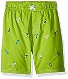 Wippette Toddler Boys' Swim Trunk, Royal, 2T
