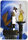 3dRose lsp_172925_1 a Dragon Guard a Castle in The Night a Torch Fire Light Up The Castle Light Switch Cover