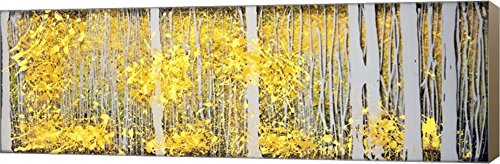 Panor Aspens Grey Forest by Roderick E. Stevens Canvas Art Wall Picture, Museum Wrapped with Light Brown Sides, 42 x 14 inches