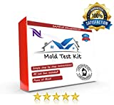 Best Mold Test Kits - Certified Mold Lab Test, Lab Analysis of Two Review