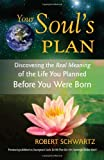 The Souls Plan