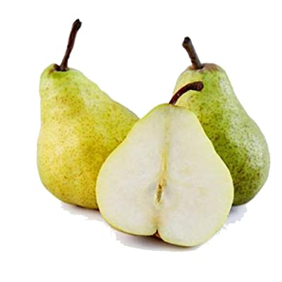 HOTUEEN 20pcs Pear Seeds Bonsai Planting Fruit Home Garden Farm Fruits : Garden & Outdoor