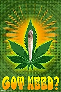 Got Weed Marijuana Leaf Joint Psychedelic Trippy Vintage 70s Weed Dope Mary Jane 420 Poster 12x18 from Pyramid America