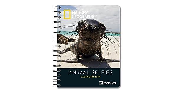 Animal Selfies 2019 National Geographic Buchkalender ...