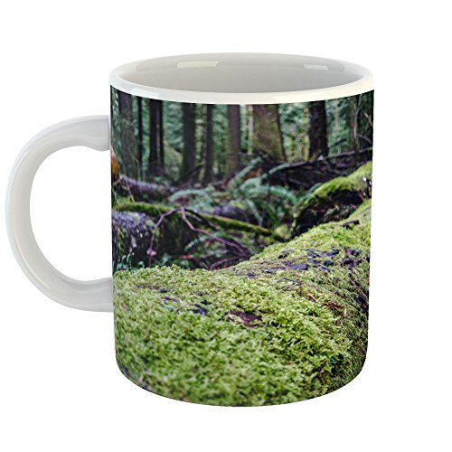 llpaper - 11oz Coffee Cup Mug - Modern Picture Photography Artwork Home Office Birthday Gift - 11 Ounce (B706-21D42) ()