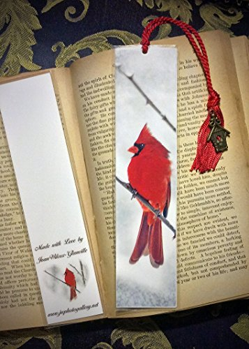 Snowy Red Cardinal Male Bird Photo Bookmark w/ Antique Bronze Birdhouse Charm Fine Art Photography Photo Laminated Handmade (Antique Store Birdhouse)