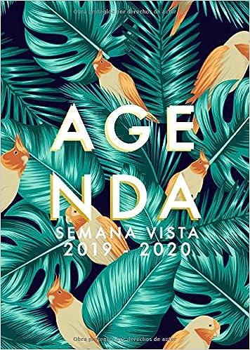 Agenda 2019-2020 Semana Vista: Agenda 18 meses 2019-2020 ...