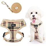 SCENEREAL Puppy Harness and Leash Set - Soft Mesh No Pull Vest Small Dog Padded Harness for Puppies & Cats