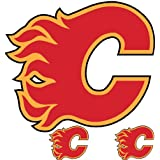 NHL Calgary Flames Wallmarx Hockey Wall Accent Set