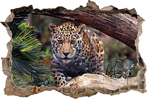 - Jaguar Tiger Leopard Smashed Wall Decal Graphic Sticker Art Mural Animals J56, Giant