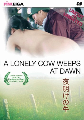 A Lonely Cow...