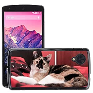Super Stella Slim PC Hard Case Cover Skin Armor Shell Protection // M00145484 Cat Rest Bed Animals Kitten Animal // LG Nexus 5
