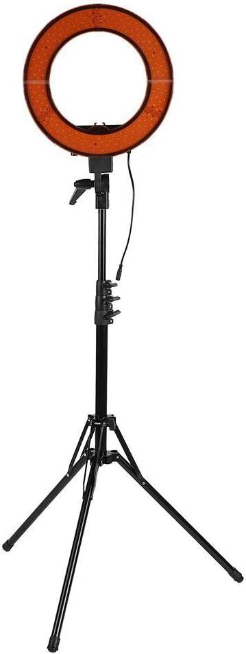 Wakects LED Selfie Ring Light US Plug 100-240V 14Inch 3200K//5500K Dimmable Ringlight Fill Light with 2M Folding Lamp Holder
