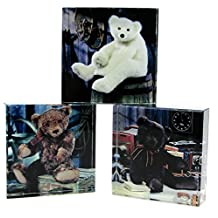 """Gund Set of 3 Vintage Teddy Bear Glass Paper Weights 3-1/2"""" Square Assorted Colors"""