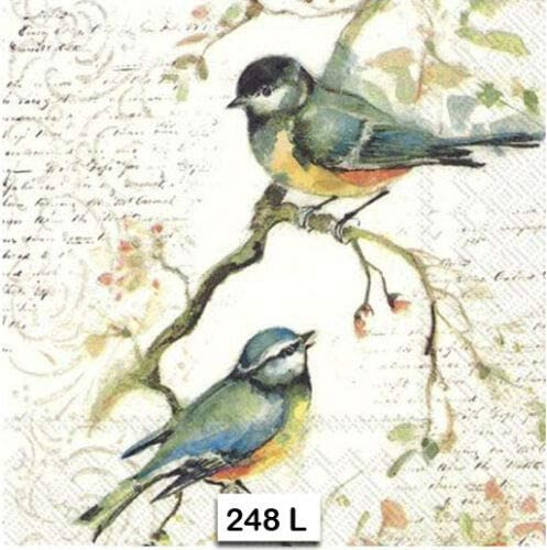 Paper-Craft and Collage Decor #654 for Decoupage 13 inches Decoupage Napkins 2 Single  Paper Napkins 33 cm