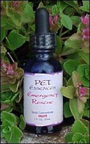 Pet Essences - Pet Essences Kidney Strengthener
