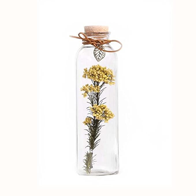 Botella de cristal para decoración de flores secas # 3: Amazon.es ...