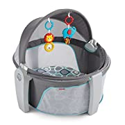31.5  L x 30  W x 28  H Fisher-Price On-the-Go Baby Dome in Bubbles