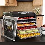 Kitchen & Housewares : Ivation 400w Electric Food Dehydrator Pro with 6 Drying Racks, Digital Temperature Controls and Timer with Automatic Shutoff from 95ºF to 158ºF, for Beef Jerky, Dried Fruits, Vegetables & Nuts