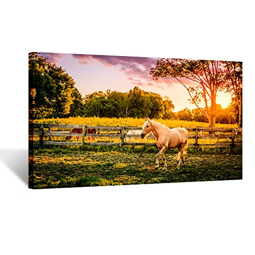 Kreative Arts Large Size Horse of a Farm Canvas Prints Wall Art Picture Modern Sunset Landscape Wild Animal High Definition Print Painting for Hotel Wall Decor Ready to Hang 20x36inch