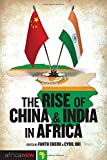 The Rise of China and India in Africa: Challenges, Opportunities and Critical Interventions (Africa Now)