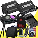 TWO NPFH50 Lithium Ion Replacement Batteries w/Charger + 16GB SDHC Memory Card + Mini HDMI + 3 Piece Filter Kit + Mini HDMI + USB SD Memory Card Reader /Wallet + Deluxe Starter Kit for Sony DCRDVD508, DCRDVD408, DCRDVD308, DCRDVD108, DCRDVD505, DCRDVD405,
