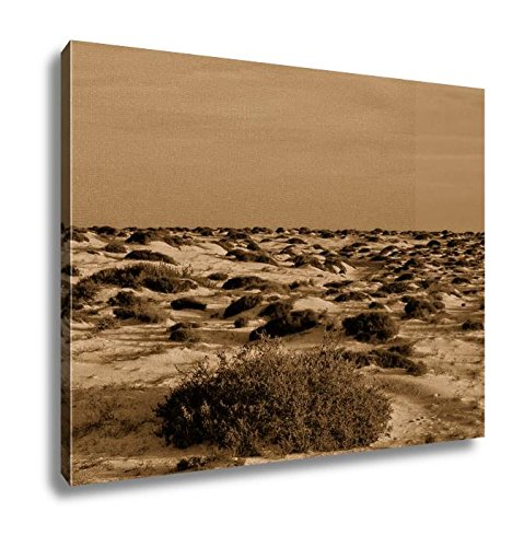 Ashley Canvas Landscape In Tropical Volcanic Canary Islands Spain, Wall Art Home Decor, Ready to Hang, Sepia, 16x20, AG6320425 by Ashley Canvas