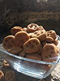 Homemade Peanut Butter and Pumpkin Dog Biscuits Review