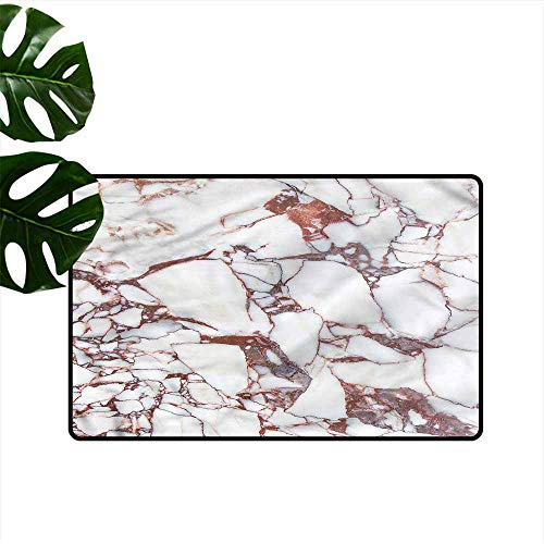 DUCKIL Non-Slip Door mat Marble Marble Grunge Stone Non-Slip Door mat pad Machine can be Washed W31 - T-rex Marbles