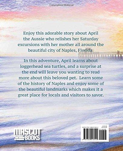 April the Aussie Saves a Sea Turtle