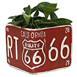 Rustic Square Cement Planter, Vintage Style Route 66 License Plate Design Flower Pot, Red