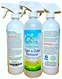 Stain Remover And Odor Eliminator - Mattress, Couch, Carpet, Auto, Floors, Pet - Blood, Poop, Vomit, Incontinence Urine Cleaner - A Safer Plant Based, Professional Strength, Non Toxic, Enzyme Formula.