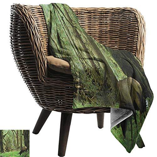 (Outdoor Blanket,Rainforest,Roosevelt Elk in Rainforest Wildlife National Park Washington Antlers Theme, Green Brown,Super Soft Faux Fur Plush Decorative Blanket 30
